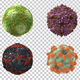 Viruses 360 - VideoHive Item for Sale
