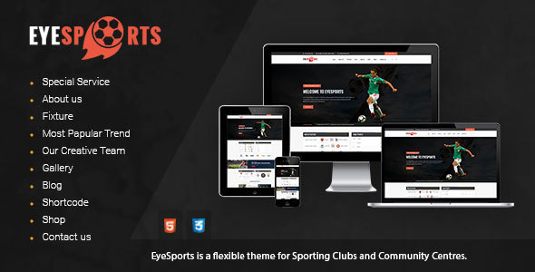 Eye Sports - Fixtures and Sports WordPress Theme - Nonprofit WordPress