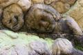 Detail of heads of cherubs - PhotoDune Item for Sale