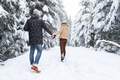 Young Couple Walking In Snow Forest Outdoor Man And Woman Holding Hands Back View - PhotoDune Item for Sale
