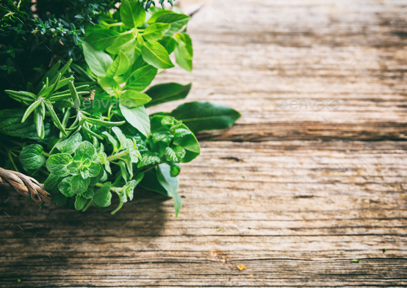 Variety of herbs on wooden background - Stock Photo - Images