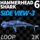 Hammerhead Shark 6 Side View-3 - VideoHive Item for Sale