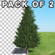 Tree Fir - VideoHive Item for Sale