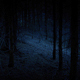 Walking Through Creepy Woods In The Dark - VideoHive Item for Sale