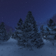 Christmas Snow Tree Background - VideoHive Item for Sale