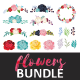 Flowers Pack - GraphicRiver Item for Sale
