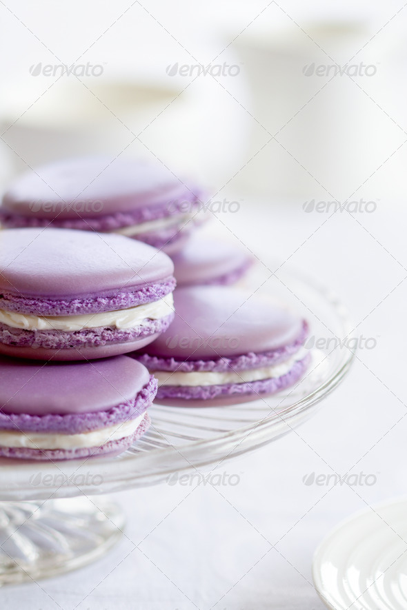 Lavender macarons - Stock Photo - Images