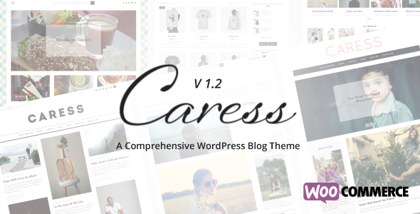 Caress - A Comprehensive WordPress Blog Theme - Personal Blog / Magazine