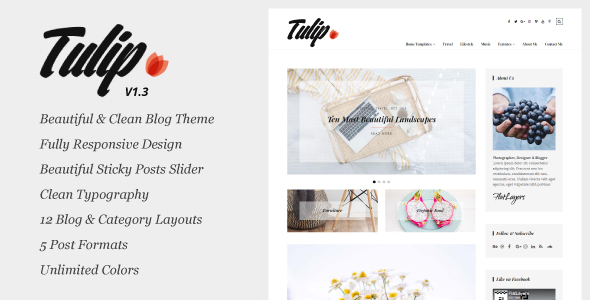 Tulip - Responsive WordPress Blog Theme - Personal Blog / Magazine