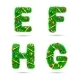 Fir Tree Font Letters - GraphicRiver Item for Sale