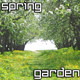 Flowering Spring Garden - VideoHive Item for Sale