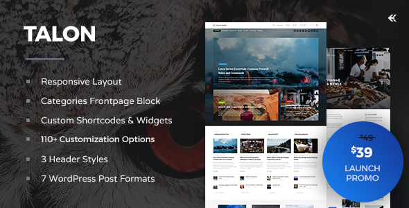 Talon – Responsive WordPress Theme