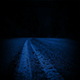 Moving Over Road Through Night Forest - VideoHive Item for Sale