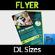Pharmacy Flyer DL Size Template - GraphicRiver Item for Sale