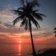 Colorful Sunset on the Tropical Island. - VideoHive Item for Sale