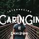 Caringin Typeface - GraphicRiver Item for Sale