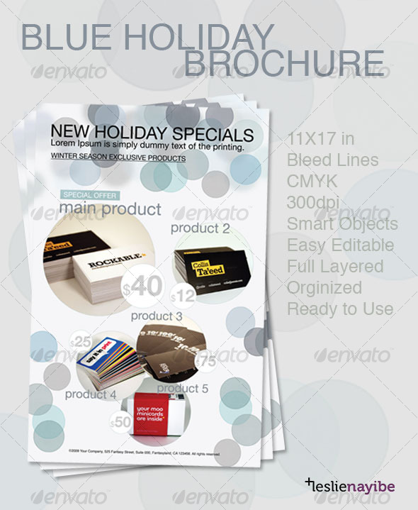 Blue Holiday Brochure - Corporate Brochures