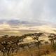 Beautiful and dramatic landscape in Ngorongoro - PhotoDune Item for Sale