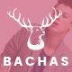 Bachas - DRAG & DROP Multipurpose Responsive Shopify Theme Nulled