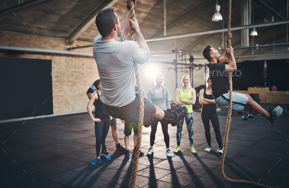 Men climbing thick rope during fitness exercises - Stock Photo - Images