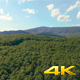 Aerial Fly Above Forest in Nature 01 - VideoHive Item for Sale