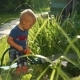 Funny Little Boy 1.5 Years Studying Hosing Plants in the Garden - VideoHive Item for Sale