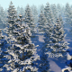 Fly Over Snowy Forest  - VideoHive Item for Sale
