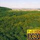 Aerial Fly Above Forest in Nature 06 - VideoHive Item for Sale