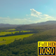 Aerial Fly Above Forest in Nature 07 - VideoHive Item for Sale