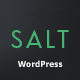 Salt | Responsive Multi-Purpose WordPress Theme - ThemeForest Item for Sale