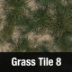 Grass Tile Texture 8 - 3DOcean Item for Sale