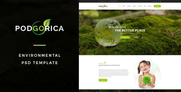 Podgorica : Environmental PSD Template - Environmental Nonprofit