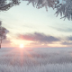 Winter Field Sunrise - VideoHive Item for Sale