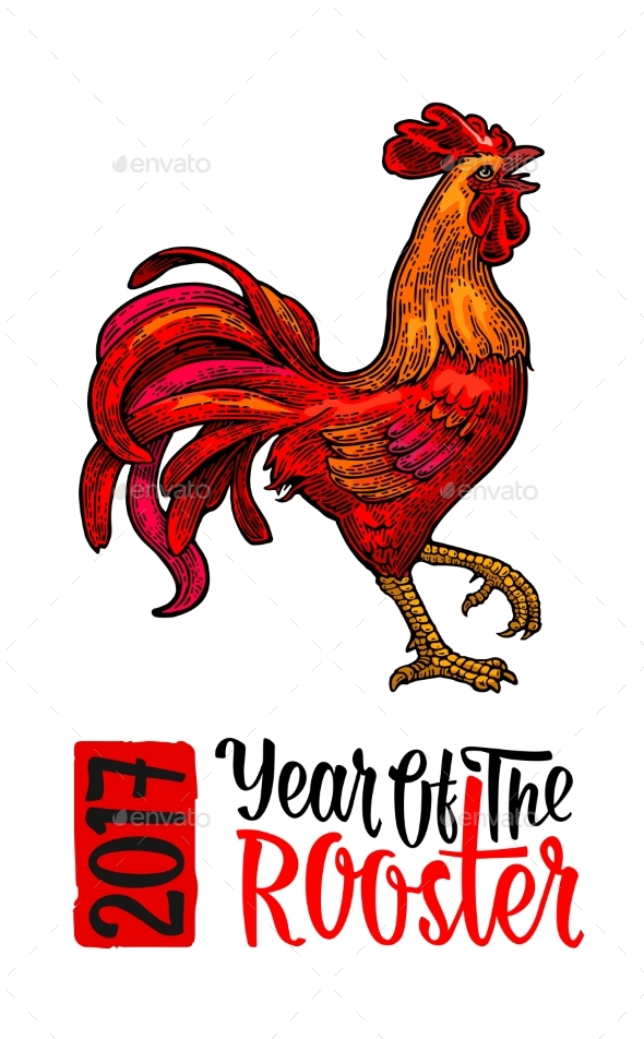 Red Fiery Rooster - Animals Characters