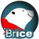 Brice on ice