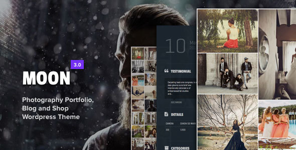 16+ WordPress Gallery Themes 2019 3