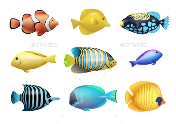 Set of Tropical Fishes - Animals Characters