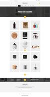 19 product grid 4 columns.  thumbnail