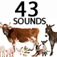 Farm Animals Sounds Pack - AudioJungle Item for Sale