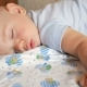 Beautiful Baby Sleeping in Funny Pose on a Bed - VideoHive Item for Sale