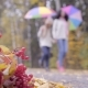 Two Teenagers Walking with Umbrellas Across Autumn Park - VideoHive Item for Sale