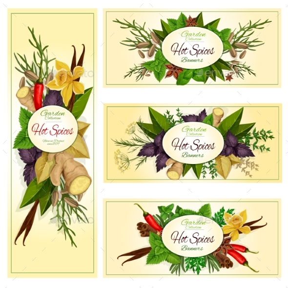 Spice Herb and Condiment Banners for Food Design - Food Objects