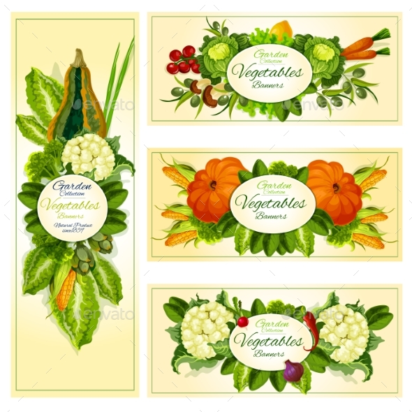 Fresh Vegetable Banner Set with Copy Space - Food Objects