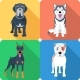 Set of Dogs Icon Flat Design - GraphicRiver Item for Sale
