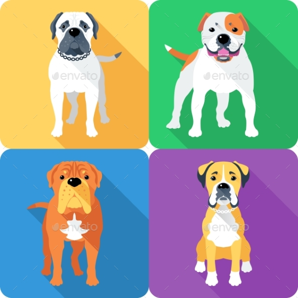 Set 8 Dog Head Icon Flat Design - Animals Characters