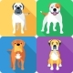 Set 8 Dog Head Icon Flat Design - GraphicRiver Item for Sale