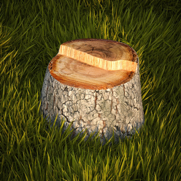 Tree stump - 3DOcean Item for Sale