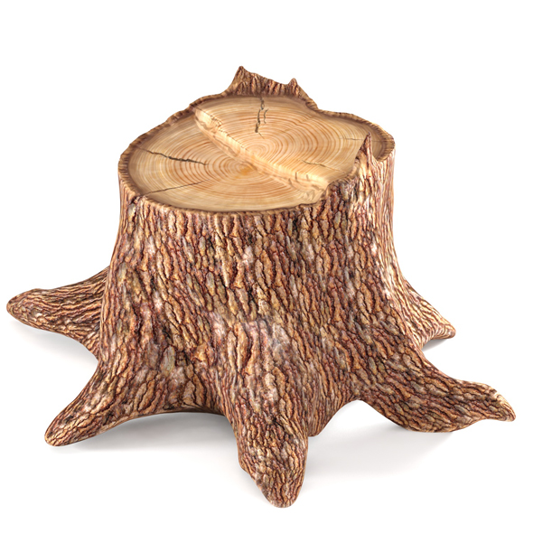 Pine stump - 3DOcean Item for Sale