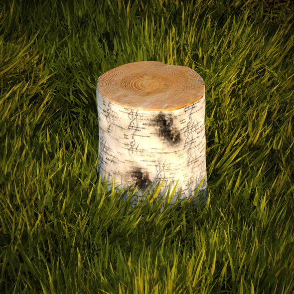 Birch stump - 3DOcean Item for Sale