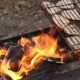 Barbecue with Bread Grilling on Twigs - VideoHive Item for Sale